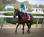 September 26, 2020: Viadera, ridden by Joel Rosario, wins the 2020 running of the G3 Noble Damsel S. at Belmont Park in Elmont, NY. Sophie Shore/ESW/CSM