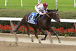 Royal Delta, ridden by Mike Smith, wins the Beldame Invatational Stakes (GI) at Belmont Park, in Elmont, New York on September 29, 2012.