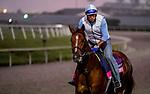 January 23, 2020: Sadler's Joy jogs as horses prepare for the Pegasus World Cup Invitational at Gulfstream Park Race Track in Hallandale Beach, Florida. Scott Serio/Eclipse Sportswire/CSM