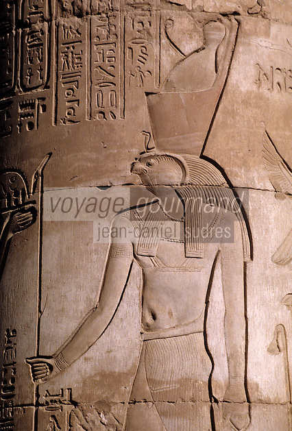 Afrique/Egypte/Env d'Assouan: Le roi Horus - temple de Kôm Ombo - Détail intérieur - Sculpture sur colonne