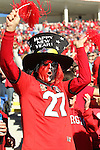 December 30, 2016: A Georgia Bulldog fan in the forth quarter of the AutoZone Liberty Bowl with the Georgia Bulldogs vs TCU Horned Frogs at Liberty Bowl Memorial Stadium in Memphis, Tennessee. ©Justin Manning/Eclipse Sportswire/Cal Sport Media