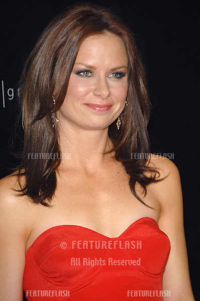 Mary Lynn Rajskub at the 9th Annual Costume Designers Guild Awards Gala at the Beverly Wilshire Hotel..February 18, 2007  Beverly Hills, CA.Picture: Paul Smith / Featureflash