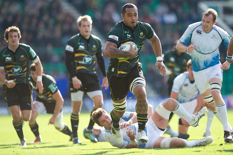 Samu Manoa of Northampton Saints charges through the Glasgow midfield during the Heineken Cup match between Northampton Saints and Glasgow Warriors  at Franklin's Gardens on Sunday 14th October 2012 (Photo by Rob Munro)