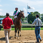 August 14, 2020:  Feel Glorious #5 ridden by Junior Alvarado trained by Christophe Clement wins the Perfect Sting at Saratoga Race Course in Saratoga Springs, New York. Rob Simmons/CSM