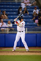 Salem Red Sox third baseman Bobby Dalbec (29) at bat during a game against the Lynchburg Hillcats on May 10, 2018 at Haley Toyota Field in Salem, Virginia.  Lynchburg defeated Salem 11-5.  (Mike Janes/Four Seam Images)