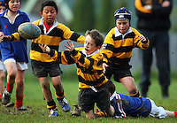 080614 Wellington Junior Rugby