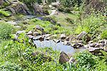 Alpine Garden Pool andStone path through alpine botanical garden.  Ohme Gardens, Wenatchee, Chelan County, Washington, USA.