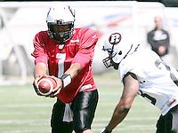 Henry Burris Ottawa RedBlacks 2014. Photo Scott Grant