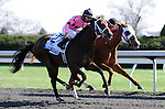 April 05, 2014: Rosalind (inside) for trainer Kenny McPeek, owner Landaluce Educe Stables and jockey Shaun Bridgmohan dead heats for the win in the $500,000 G1 Ashland S. with Room Service (outside) for trainer Wayne Catalano, owners Gary and Mary West and jockey Joel Rosario at Keeneland.Jessica Morgan/ESW/CSM