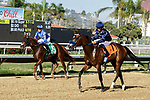 DEL MAR, CA  SEPTEMBER 6:  #5 Mackinnon, ridden by Juan Hernandez, and #7 Thirty Four Coupe, ridden by Mike Smith, return to their connections after going 1-2 in the Del Mar Juvenile Turf on September 6, 2021 at Del Mar Thoroughbred Club in Del Mar, CA. (Photo by Casey Phillips/Eclipse Sportswire/CSM)