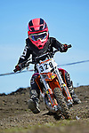 NELSON, NEW ZEALAND - 2021 Mini Motocross Champs: 2.10.21, Saturday 2nd October 2021. Richmond A&P Showgrounds, Nelson, New Zealand. (Photos by Barry Whitnall/Shuttersport Limited) 328