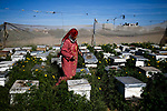 Palestinian beekeeper Sohayla al-Najjar takes care of her honey farm by her house in Khan Yunis in the southern Gaza Strip on March 5, 2020. Photo by Osama Baba