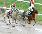 Lady Cohiba (no. 9), ridden by Junior Alvarado and trained by Christophe Clement, wins the 18th running of the grade 3 Glens Falls Stakes for fillies and mares three years old and upward on September 2, 2013 at Saratoga Race Course in Saratoga Springs, New York.  (Bob Mayberger/ Eclipse Sportswire)