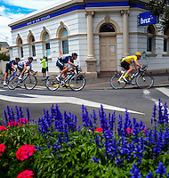 UCI Oceania Tour - NZ Cycle Classic stage two - Masterton to Martinborough circuit in Wairarapa, New Zealand on Thursday, 21 January 2016. Photo: Charley Lintott / lintottphoto.co.nz
