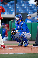 Dunedin Blue Jays catcher Danny Jansen (5) during a game against the Clearwater Threshers on April 7, 2017 at Spectrum Field in Clearwater, Florida.  Dunedin defeated Clearwater 7-4.  (Mike Janes/Four Seam Images)