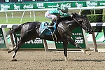 June 6 2015:  Honor Code with Javier Castellano win the 122nd running of the Grade I Metropolitan Mile for 3-year olds & up, going 1  mile at Belmont Park.  Trainer Shug McGaughey . Owner Lanes End & Dell Ridge Farm. Sue Kawczynski/ESW/CSM