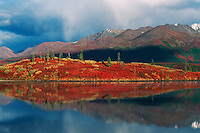 Indian Summer fall colors, Tangle Lake, Alaska, USA