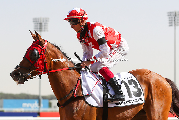 March 27, 2021: RB MONEY TO BURN #13 in the post parade for the Kahayla Classic on Dubai World Cup Day, Meydan Racecourse, Dubai, UAE. Shamela Hanley/Eclipse Sportswire/CSM
