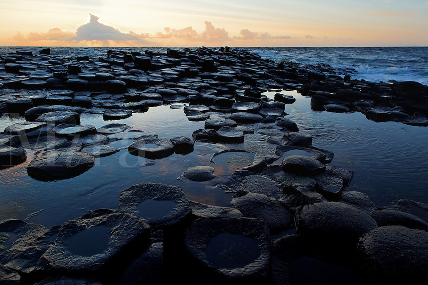 Partially submerged basalt columns at Giant's Causeway near sunset, County Antrim, Northern Ireland, United Kingdon