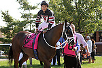 September 07, 2015. Joshua Navarro climbs aboard Inspired by Grace, his mount in the Turf Amazon Handicap Stakes, 5 furlongs for fillies and mares 3 and upward, at  Parx Racing in Bensalem, PA. (Joan Fairman Kanes/ESW/CSM)