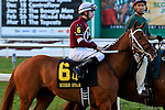 NEW ORLEANS, LA - FEBRUARY 20:<br /> Gun Runner #6, ridden by Florent Geroux  in the Risen Star Stakes post parade for the Louisiana Derby Preview Race Day at Fairgrounds Race Course on February 20,2016 in New Orleans, Louisiana. (Photo by Steve Dalmado/Eclipse Sportswire/Getty Images)