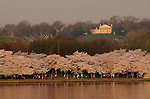 2013 National Cherry Blossom Festival -- Arlington House and Arlington National Cemetery.