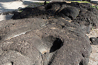 Kanoa (bowls carved in lava rock), Pu'uhonua (Place of Refuge) o Honaunau National Historical Park, Big Island.