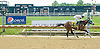 Economic Stimulus winning at Delaware Park on 6/2/12