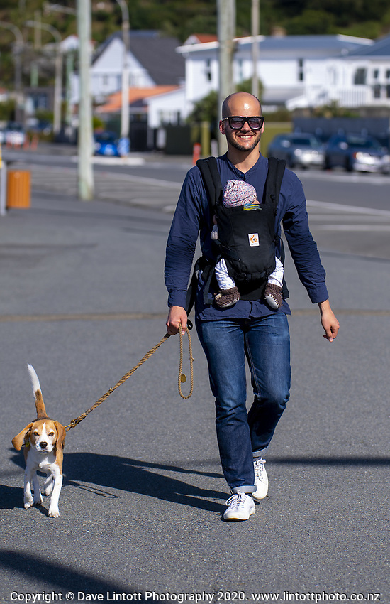 Tim Denee with baby Nico and beagle Bessie walking at Lyall Bay on Easter Monday during lockdown for the COVID19 pandemic in Wellington, New Zealand on Monday, 13 April 2020. Photo: Dave Lintott / lintottphoto.co.nz