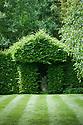 Topiary hornbeam hedge, Vann House and Garden, Surrey, mid June.