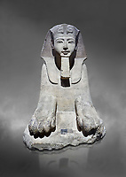 Ancient Egyptian Sphinx statue, sandstone, New Kingdom, early 19th Dynasty (1292-1250), Karnak, Temple of Amon. Egyptian Museum, Turin. Grey background<br /> <br /> This sphinx statue show signs of remodelling. the accentuated curves of the eyebrows, the almond shaped eyes and the wide mouth with fleshy lips are still influenced by the late 18th Dynasty style. The long aquiline nose however is typical of Ramesside. The lappets of the nemes headdress and the beard show clear traces of unfinished re-carving. Drovetti Collection. C1409