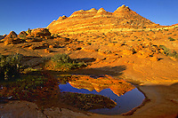 Reflection in early morning light in pothole pool, Coyotte Buttes Wilderness area, Arizona. Arizona, Coyote Buttes Wilderness Area.