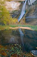 Lower Calf Creek Falls<br /> Calf Creek Recreation Area<br /> Grand Staircase-Escalante National Monument<br /> Colorado Plateau,  Utah