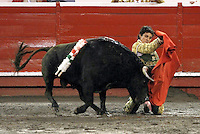 MANIZALES - COLOMBIA. 04-01-2016: Leo Valadez, lidiando con Jasper de 394 kg de peso de la ganaderia Salento durante la primera corrida, novillada, como parte de la versión número 60 de La Feria de Manizales 2016 que se lleva a cabo entre el 2 y el 10 de enero de 2016 en la ciudad de Manizales, Colombia. /  The bullfighter Leo Valdez, struggling to Jasper 394 kg of livestock Salento, during the first bullfight, as part of the 60th version of Manizales Fair 2016 takes place between 2 and 10 January 2016 in the city of Manizales, Colombia. Photo: VizzorImage / Santiago Osorio / Cont