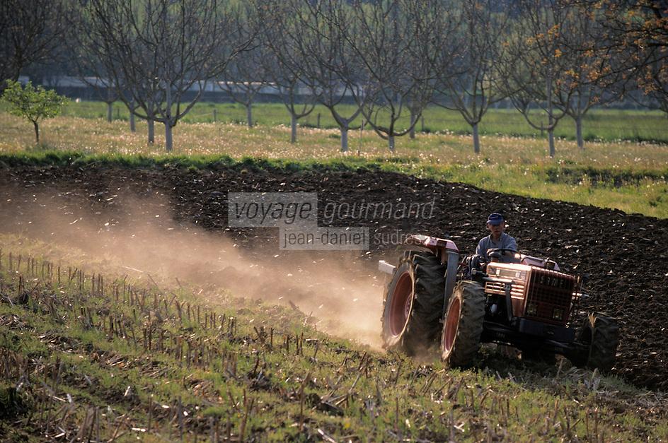 Europe/France/Midi-Pyrénées/46/Lot/Vallée de la Dordogne/Env Lacave: Tracteur et labours dans la vallée