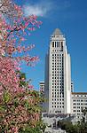 Misc LA Architecture