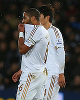 Ashley Williams of Swansea City shows a look of dejection during the Barclays Premier League match between Swansea City and Leicester City played at The Liberty Stadium on 5th December 2015