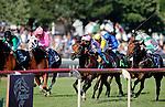 ARLINGTON HEIGHTS, IL - AUGUST 13: Mondialiste #9, ridden by Daniel Alexander Tubhope, wins the Arlington Million at Arlington International Racecourse on August 13, 2016 in Arlington Heights, Illinois. (Photo by Jon Durr/Eclipse Sportswire/Getty Images)