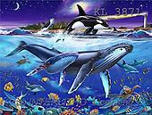 Interlitho, Lorenzo, FANTASY, paintings, whales, lighthouse, KL, KL3871,#fantasy# illustrations, pinturas