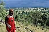 Kenya, Africa. Siria Maasai; moran warrior with red ochre hairstanding on a hill looking out over the countryside.