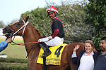 HOT SPRINGS, AR - APRIL 14: Jockey Ricardo Santana Jr. aboard Whitmore #4, in winners circle after winning the Count Fleet Sprint at Oaklawn Park on April 14, 2018 in Hot Springs, Arkansas. (Photo by Justin Manning/Eclipse Sportswire/Getty Images)