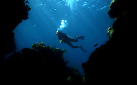 A diver  in  Roatan Island, Honduras .Roatan is the largest island of Honduras Bay Islands, near the largest barrier reef in the Caribbean Sea ..