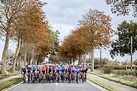 peloton    <br /> <br /> 9th Gent-Wevelgem in Flanders Fields 2020<br /> Elite Womens Race (1.WWT)<br /> <br /> One Day Race from Ypres (Ieper) to Wevelgem 141km<br /> <br /> ©kramon