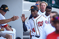Mesa Solar Sox center fielder Victor Robles (14), of the Washington Nationals organization, receives a high five from a teammate between innings during an Arizona Fall League game against the Peoria Javelinas on October 25, 2017 at Sloan Park in Mesa, Arizona. The Solar Sox defeated the Javelinas 6-3. (Zachary Lucy/Four Seam Images)