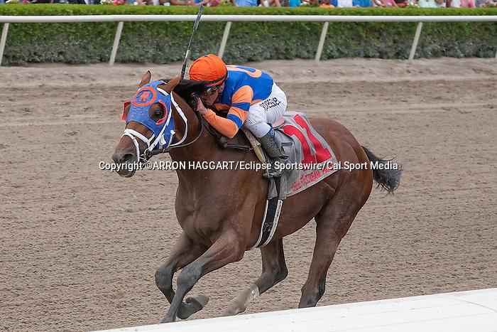 March 29, 2014: Micromanage with jockey Javier Castellano up wins the Skip Away(G3) on Florida Derby Day at Gulfstream Park in Hallandale Beach (FL). Arron Haggart/ESW/CSM