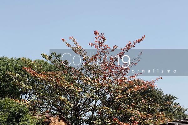 Campinas (SP), 20/08/2021 - Clima - Com a baixa umidade do ar, Campinas (SP) está em Estado de Alerta. Às 12h40 desta sexta-feira (20), o índice atingiu 19,9% e o Departamento de Defesa Civil do município emitiu o boletim informando o Estado de Alerta devido a Umidade Relativa do Ar (URA) estar abaixo dos 20%, segundo medição registrada pela Estação Ciiagro/IAC.