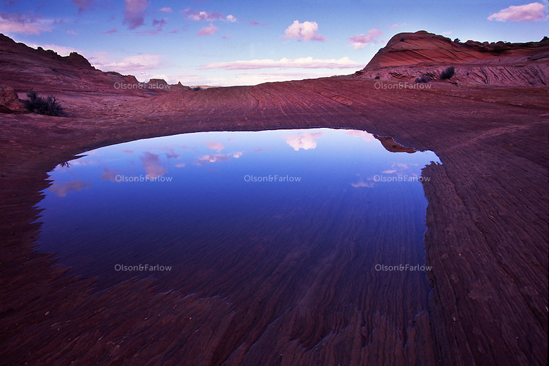 """A footprint-size pool of indigo reflects a clear sky in the redrock wilderness of Coyote Buttes in the Vermilion Cliffs National Monument.   The fragile site is adjacent to """"The Wave,""""  a geologically spectacular area where crossbeds of the Navajo Sandstone exhibit colorful banding in surreal hues of yellow, orange, pink, and red caused by the precipitation of manganese, iron and other oxides. Thin veins or fins of calcite cut across the sandstone adding another dimension to the landscape."""