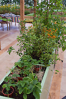 Raised bed fruit and berry garden with strawberries, blueberries, marigolds, grapes, and upscale house patio and garden furniture