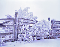 Fence with hoar frost. Near Maupin, Oregon.