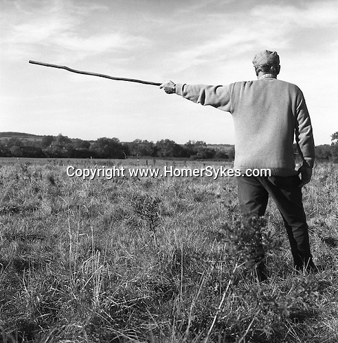 """.The Dummer Beagles. The hare is territorial and often runs in a rough circle. A well-known and true saying with the hare hunting fraternity is """"The first shall be last, and the last first"""". Court Hayes Farm, Wyck Beacon, Gloucestershire.."""